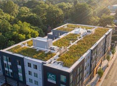 Innovi Dak - Dakdekkersbedrijf - Groene daken